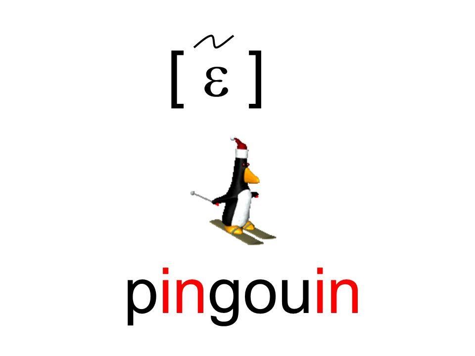 [  ] pingouin
